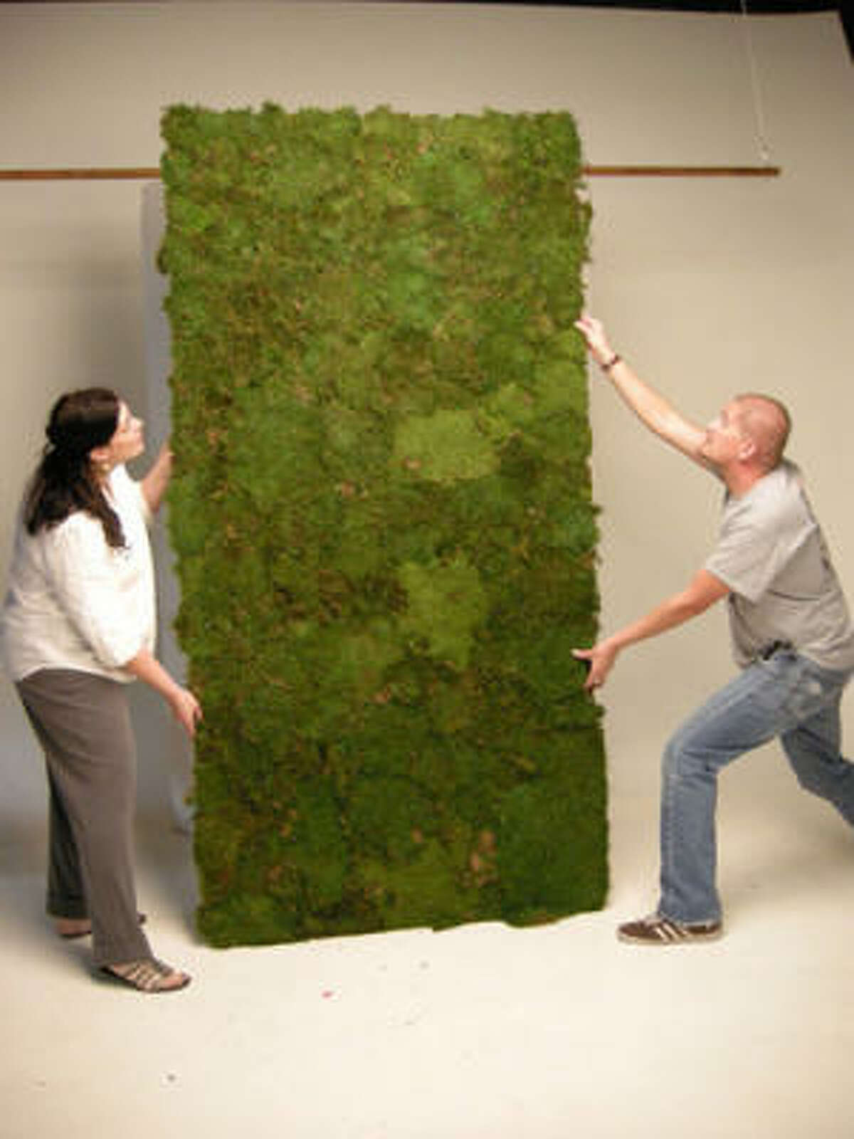 Stylist Dawn Bell and photographer Nick de la Torre set up the first of two panels of moss.