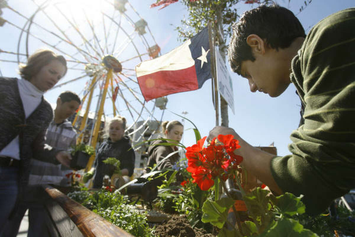 Mason Parva, 13, tends to flowers Sunday in the Kingwood 4-H Club's entry for the Houston Livestock Show and Rodeo horticulture competition.