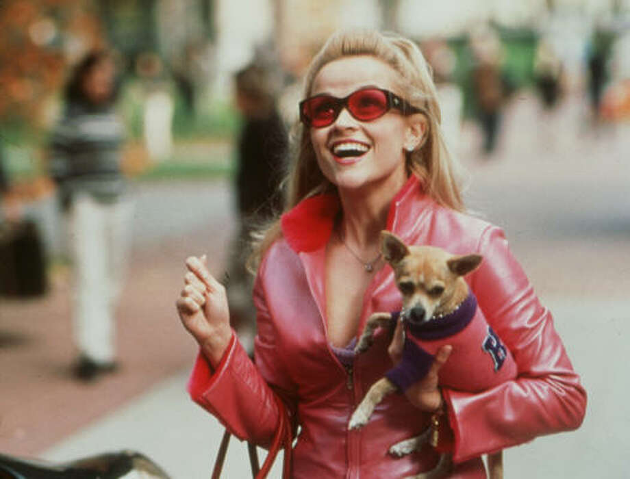 Reese Witherspoon in ''Legally Blonde.'' Enough said. Photo: Tracy Bennett, MGM