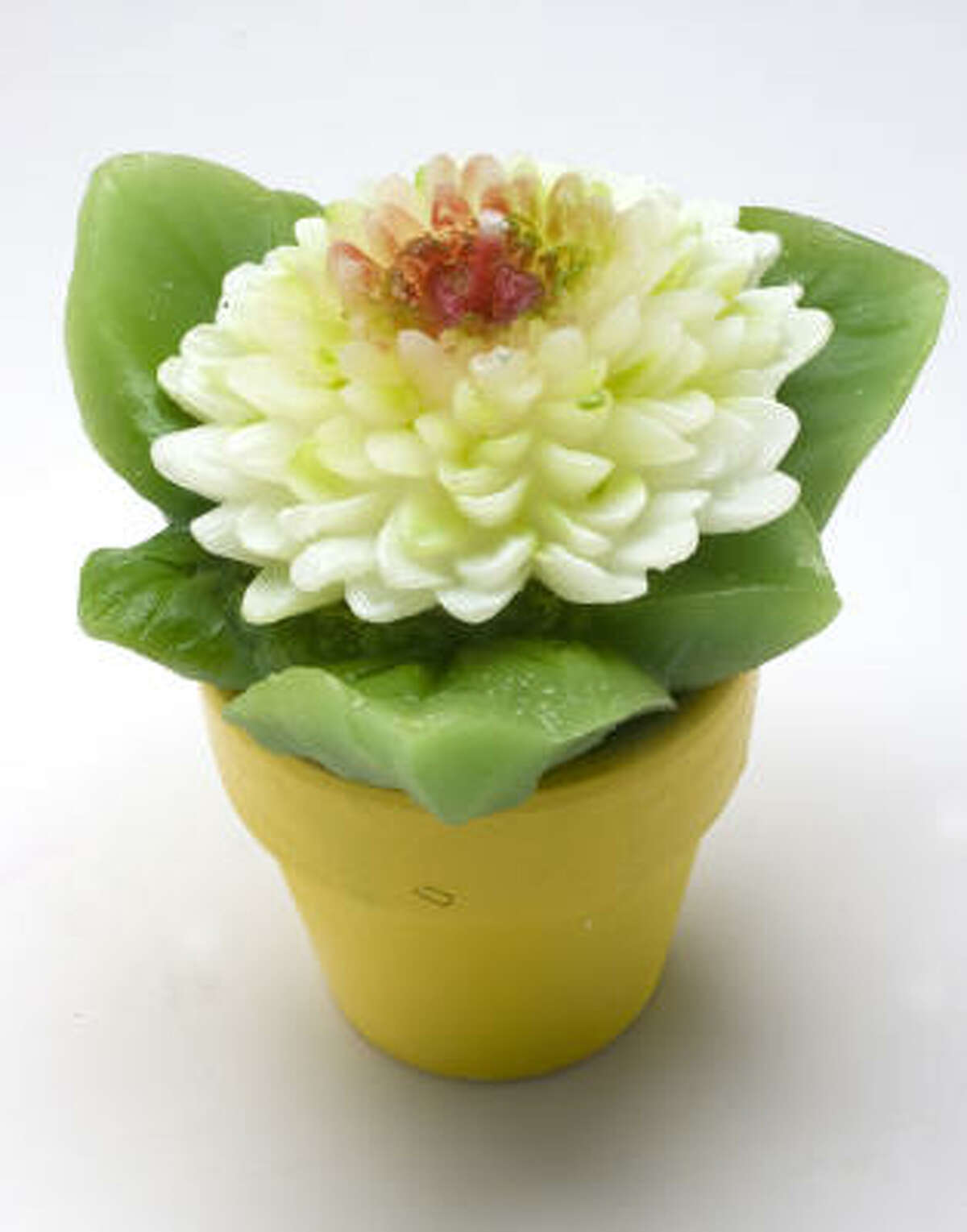 """All house plants should be this easy. Since the potted """"flower"""" is actually a candle, it's hardy and zero maintenance. $7 at Plush Home; plushhome.net."""