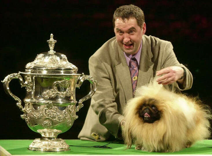 Albert Easdon shows off his Pekinese, Danny, after the dog was named Best in Show at Crufts in 2003.