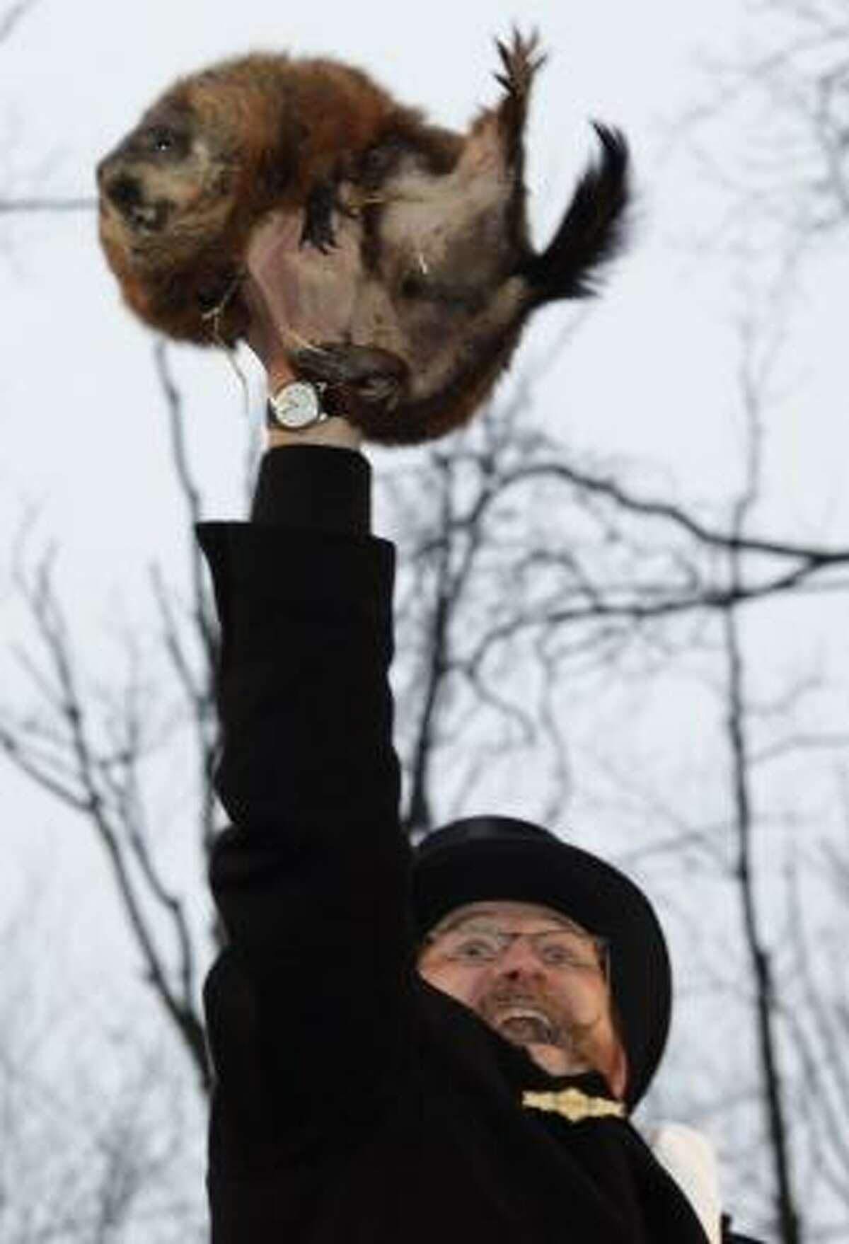 Ben Hughes, handler of weather-predicting groundhog Punxsutawney Phil, holds Phil in the air after removing him from his stump at Gobbler's Knob on Monday in Punxsutawney, Pa.