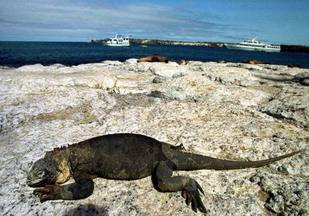 1. Galapagos Islands
