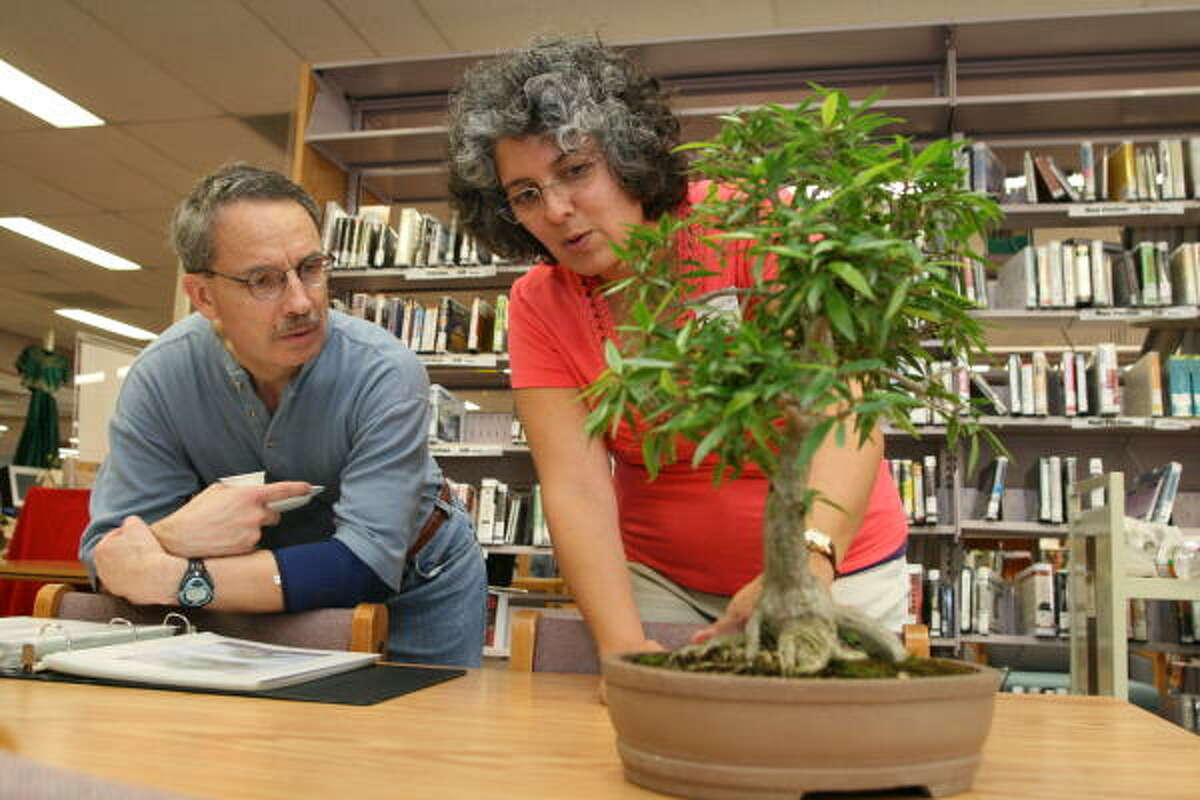Houston Bonsai Society's Christina Esmahan explains the art of working with bonsai to Rick Armes at an event in 2008.