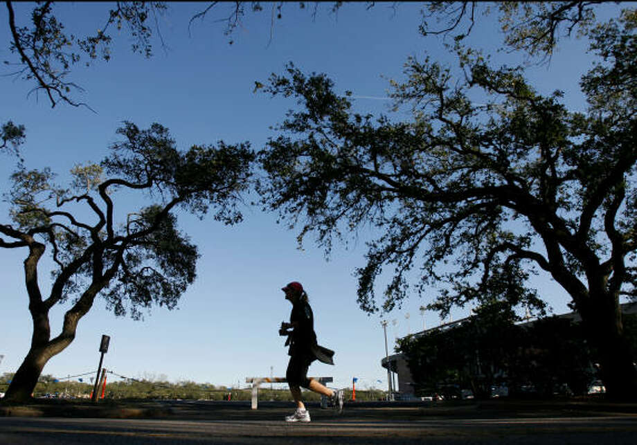 A runner under the canopy of oak trees circling the campus of Rice University. Photo: Nick De La Torre, CHRONICLE