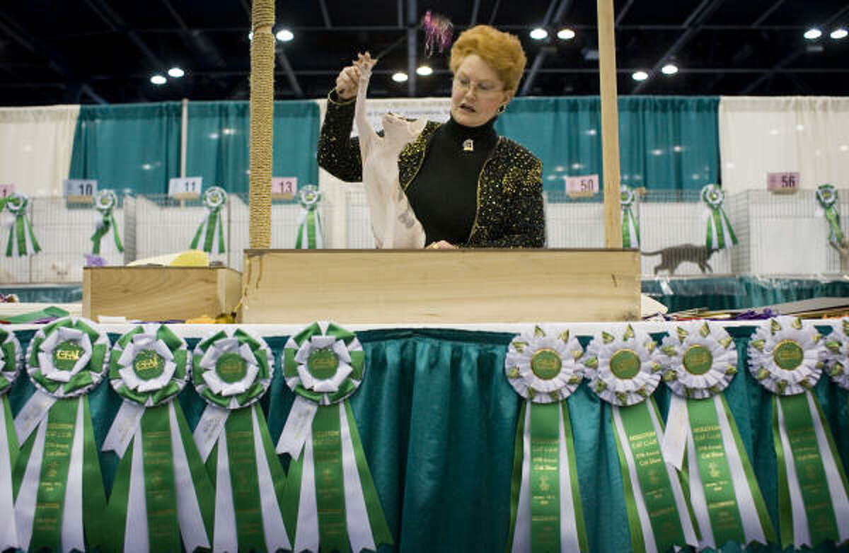 Judge Kim Everett-Hirsch explains the attributes of the Sphynx kitten that won the top best-of-show title for kittens. Sixty kittens were judged in the best of show kitten competition.