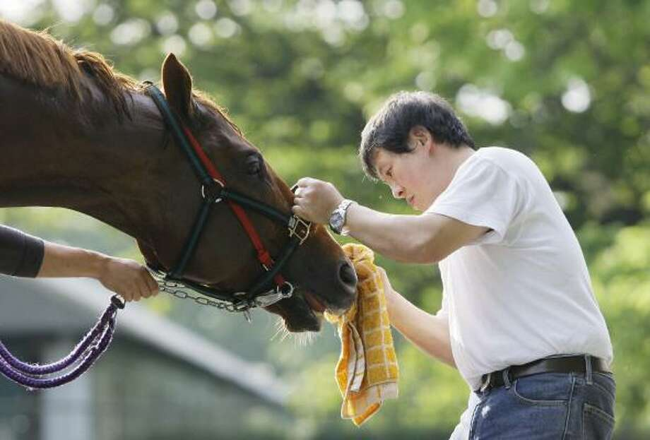 The horse Casino Drive is regarded as the biggest threat to Big Brown's Triple Crown campaign. Photo: Julie Jacobson, AP