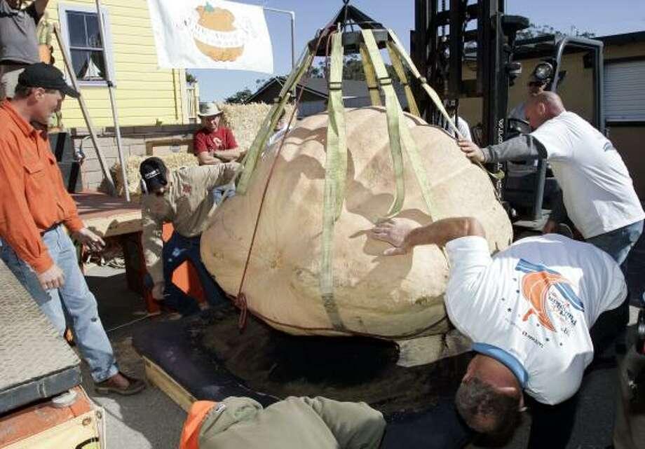 Thad Starr, far left, watches his pumpkin being moved. Photo: PAUL SAKUMA, ASSOCIATED PRESS