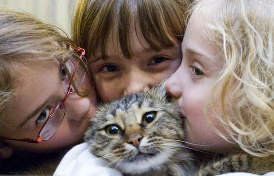 Fluffy gets her fill of kisses from sisters Marisa, left, Tamara and Evelyn Wattenbarger at home in Houston. Photo: BILLY SMITH II, CHRONICLE