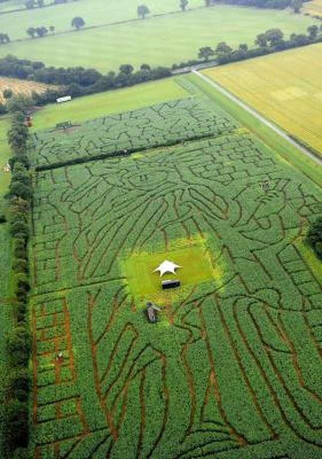 A maze formed in a maize field in the shape of the Statue of Liberty is revealed in this aerial photo in the countryside near York, England. Photo: John Giles, Associated Press