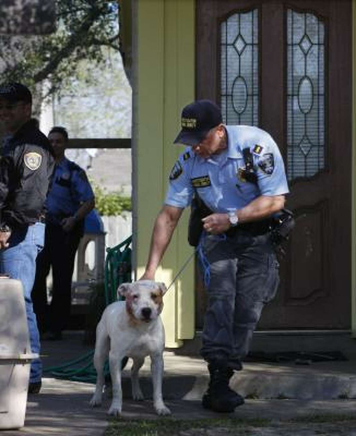 Lt. Mark Timmers, an animal cruelty investigator with Harris County, leads a dog Tuesday to a Houston Humane Society van.