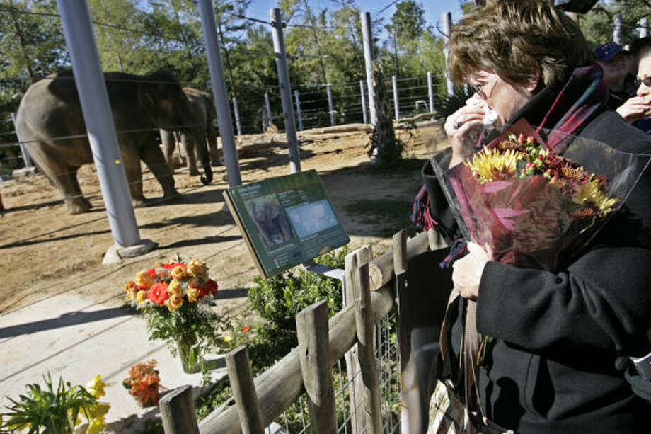 Pamela Anzalotti holds flowers following a memorial service for Mac the elephant Saturday, Nov. 15, 2008 in Houston. The 2-year-old pachyderm recently died from herpes. Photo: Eric Kayne, Chronicle