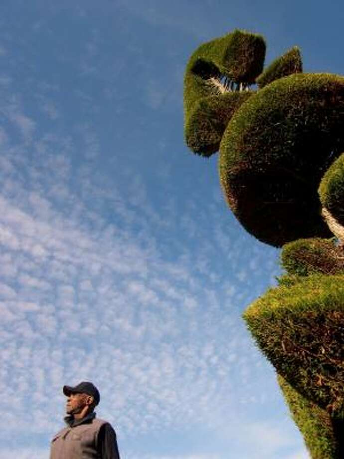 Topiary artist Pearl Fryar is the inspiration for the documentary A Man Named Pearl. Photo: TENTMAKERS ENTERTAINMENT, SHADOW DISTRIBUTION