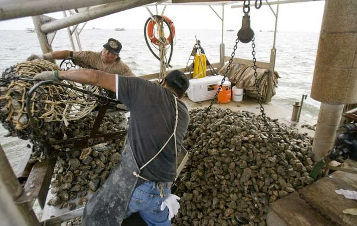 Alfredo Aguilar, facing, and Manuel Alfaro pull a dredging net full of oysters and storm debris onto their boat in this undated file photo.