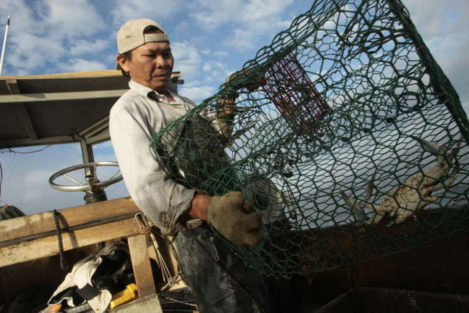 Lam Huynh shakes crabs from one of his crab traps on Trinity Bay Wednesday, Nov. 5, in Anahauc. Huynh lost two fishing boats and several crab traps in Hurricane Ike. Photo: Billy Smith II, Chronicle