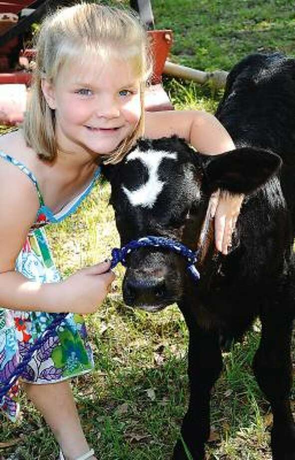 "Jamie Zimmerhanzel calls the animal, dubbed J, ""my special calf."" Photo: DAN DALSTRA, THE (BRAZOSPORT) FACTS"