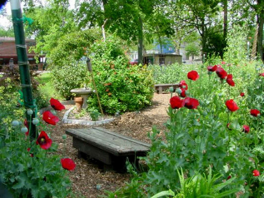 How to work vegetables into your front yard landscape Houston