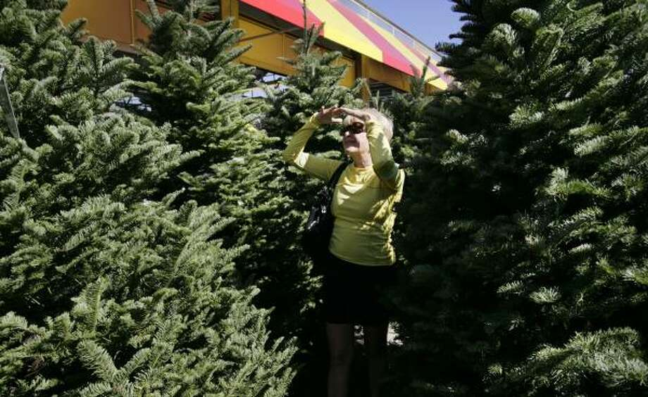 The Hunt For A Christmas Tree Is About 39 Time Together 39 Houston Chronicle