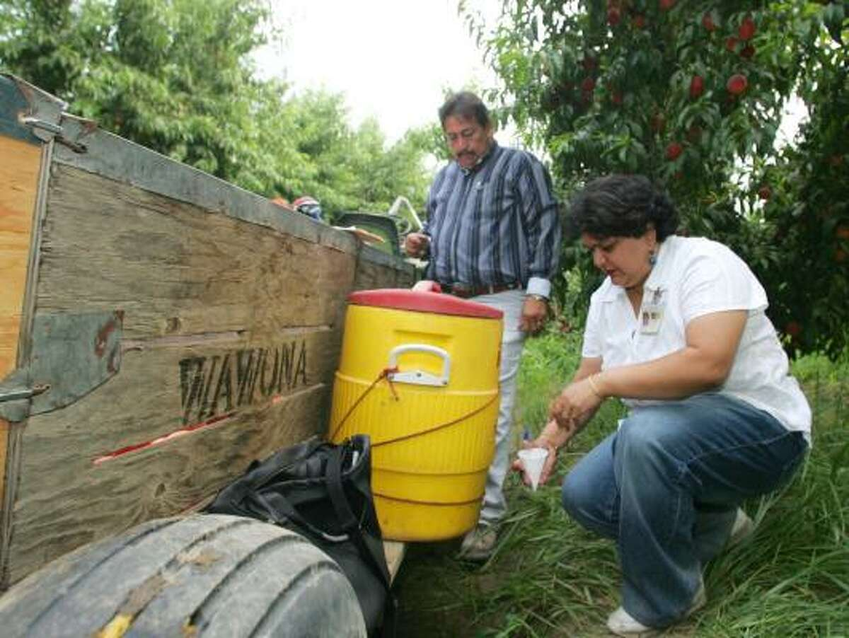 Jan Hami, an associate safety engineer at Cal-OSHA, samples water as Jesse Leija looks on in a peach orchard on July 10 in Raisin City, Calif. Cal-OSHA, the state Division of Occupational Safety and Health, is responsible for monitoring worker safety at farms around the state.