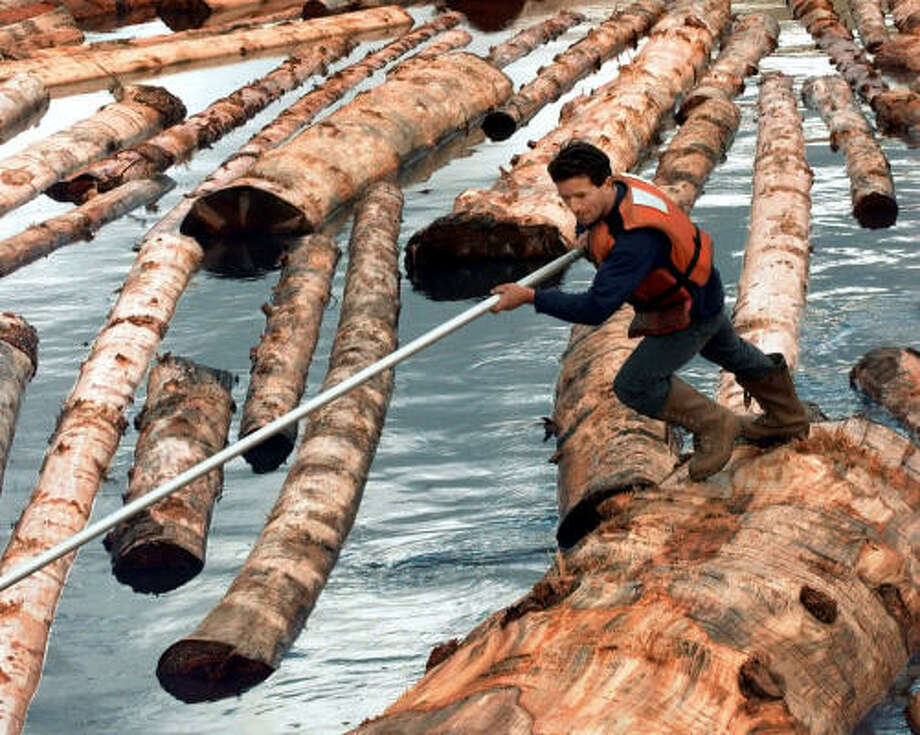 A Pacific Lumber millworker pushes logs through a canal in Scotia, Calif. Photo: SUSAN RAGAN, AP File