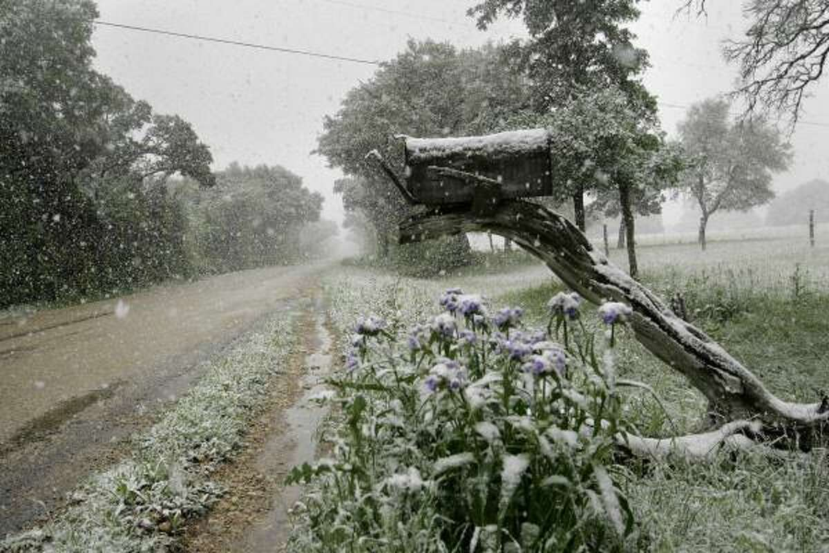 A mailbox and flowers are mantled in white near the Bush ranch in Crawford. Texas wasn't the only state to see chilly conditions as the cold snap swept across the country.