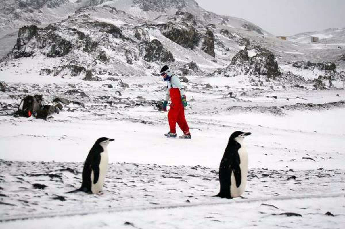 Carol Young runs in the Antarctica Marathon, an event she was unable to finish because of weather conditions.