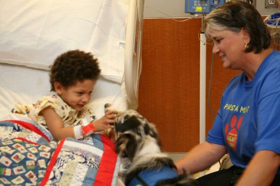 R.J. Trotter, 3, of Katy received a visit from Gracie, an 18-month-old Australian shepherd pet therapy dog and Gracie's owner, Sharon Evans, a volunteer at the hospital while Trotter was a patient at Memorial Hermann Katy Hospital. Photo: SUZANNE REHAK, FOR THE CHRONICLE