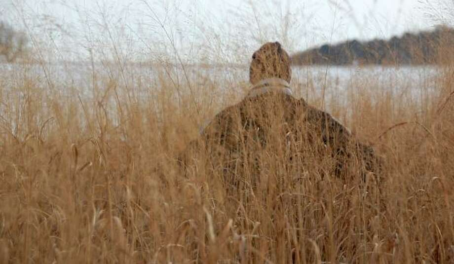 Arvid Boe, a plant science professor at South Dakota State University, looks out from a field of switchgrass on the college's Brookings campus. Photo: DIRK LAMMERS, ASSOCIATED PRESS