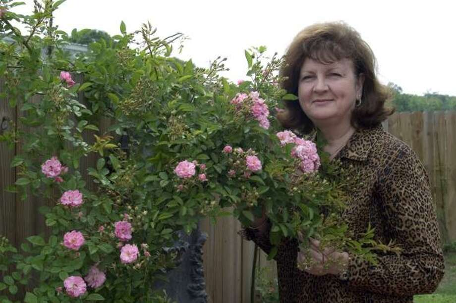 Peggy Martin stands with the found rose that now bears her name and has become a symbol of revival along the Hurricane Katrina-stricken Gulf Coast. Photo: Megan Thompson, For The Chronicle