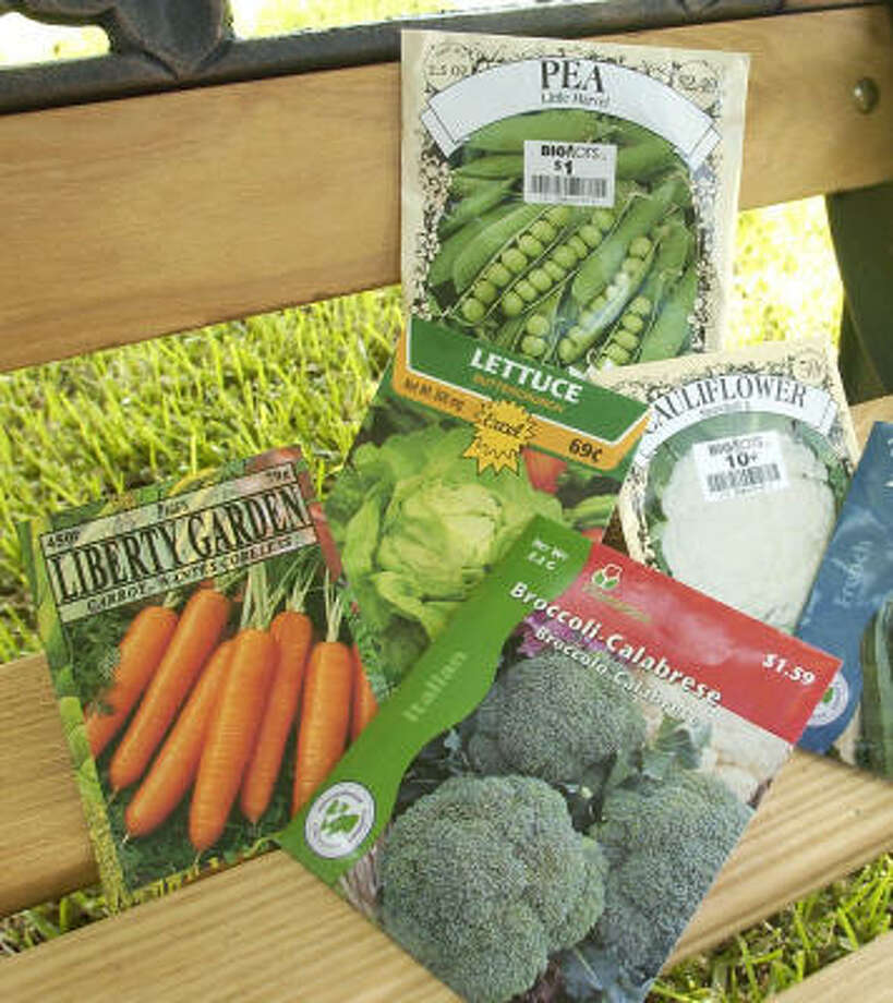 It's getting time to prepare for your fall vegetable garden. Photo: BILL OLIVE, FOR THE CHRONICLE
