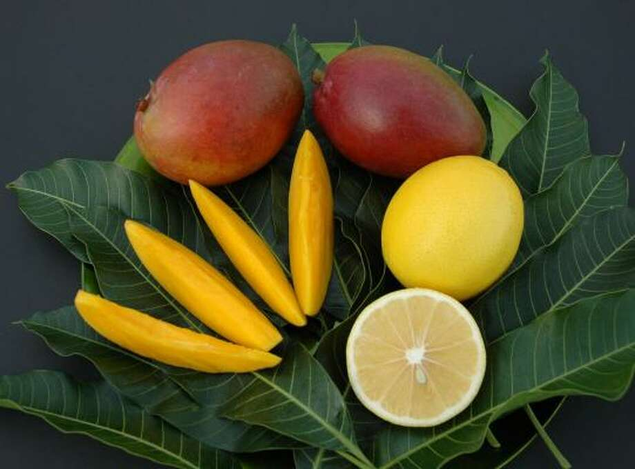 Mangos and `Meyer' lemons Photo: Treesearch Farms