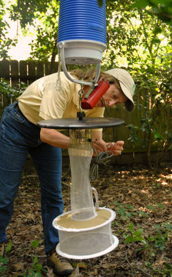 Lynne Aldrich, environmental services manager for the Community Associations of The Woodlands, places a mosquito trap in the backyard of a home in The Woodlands. She is trapping mosquitoes to see if any are carrying the West Nile Virus. Photo: David Hopper, For The Chronicle