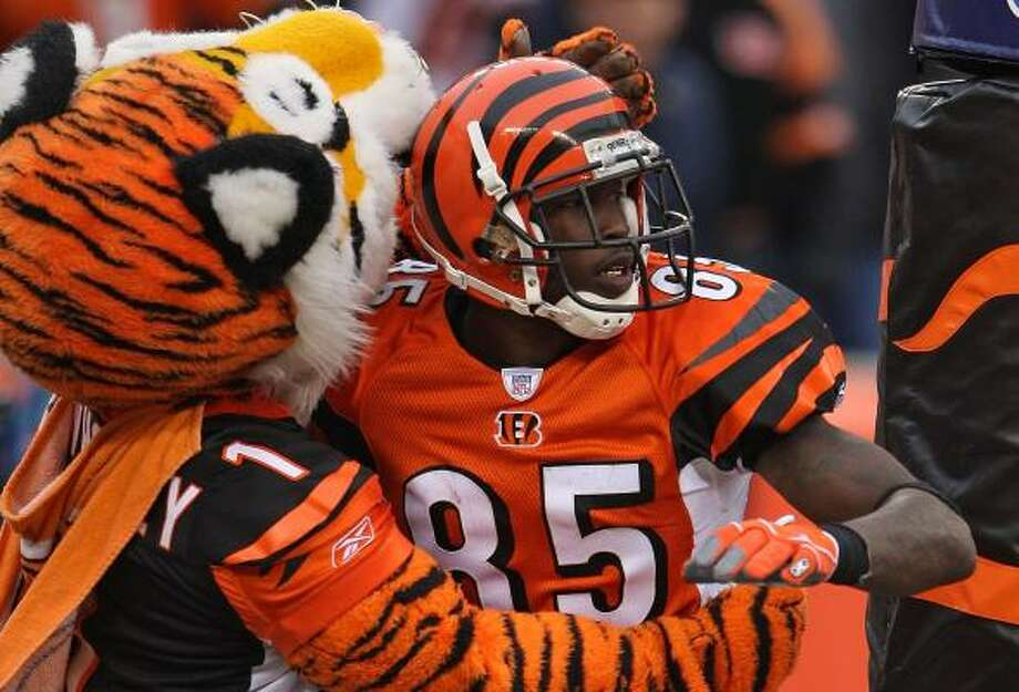 Chad Johnson celebrates with the Bengals' mascot after one of his three TD catches. Photo: ANDY LYONS, GETTY IMAGES
