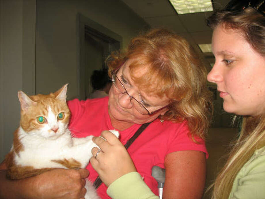 Galveston evacuees Ashley and her mother Ann Harris are reunited with their 11-year-cat Brittany at the Houston SPCA. As Hurricane Ike approached the coast, the Galveston residents tried to find their cat, but she hid somewhere in the house and could not be found before they had to evacuate. Photo: Lana Berkowitz, Chronicle