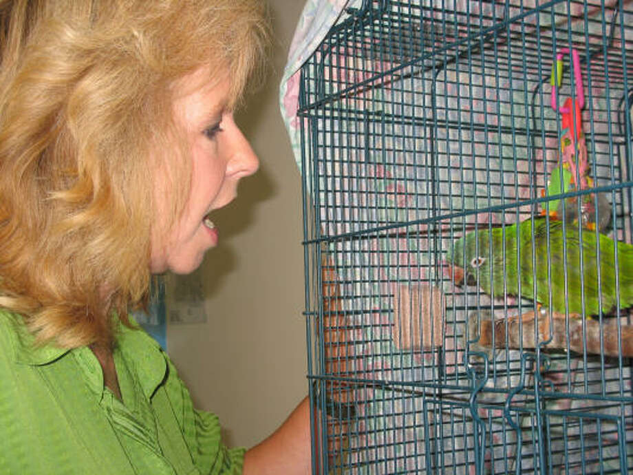 Rose Moreno talks to one of her birds, which were relocated to the Houston SPCA after her house in Galveston was destroyed by Hurricane Ike. Photo: Lana Berkowitz, Chronicle