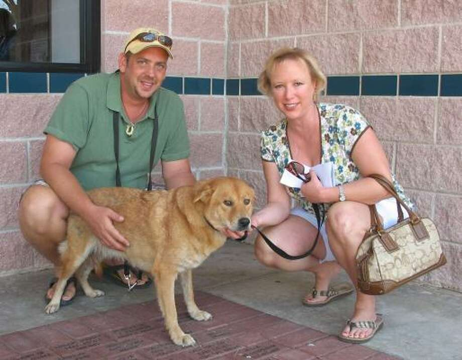 Scott and Kelly Wheat visited the Houston SPCA to make a $1,000 donation. They left with Princess, a Galveston dog with thin patches of fur who needs a temporary home. They moved through the line quickly because they were willing to take a big dog. Photo: Lana Berkowitz, Chronicle
