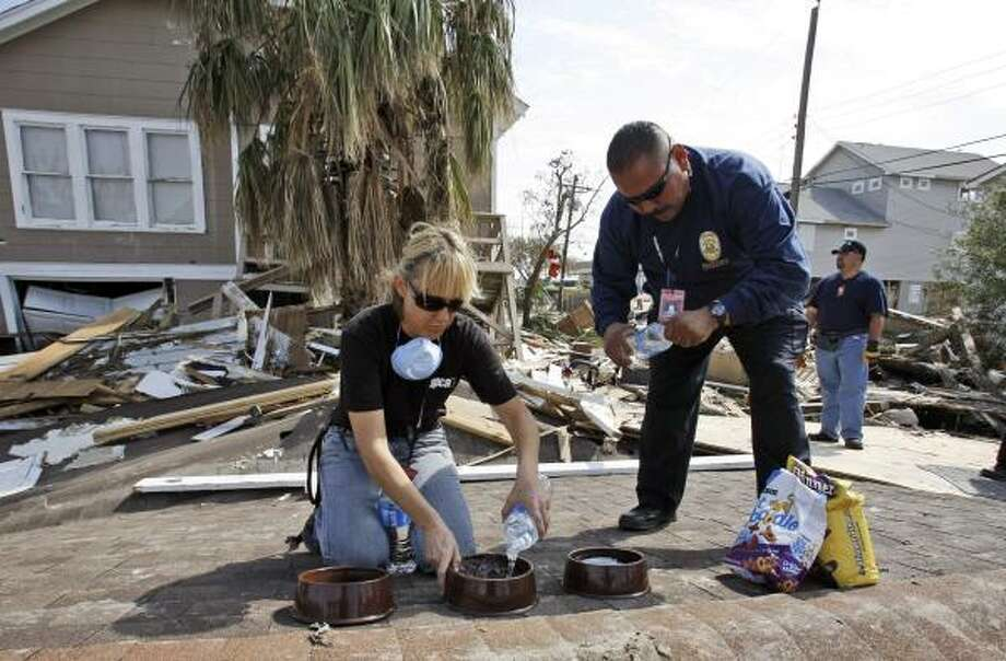 Arlene Hall, left, and Robert Lopez, both members of the Society for the Prevention of Cruelty to Animals (SPCA) from  Los Angeles, Calif., put out food and water for pets in Galveston Sept. 18. Photo: LM Otero, AP