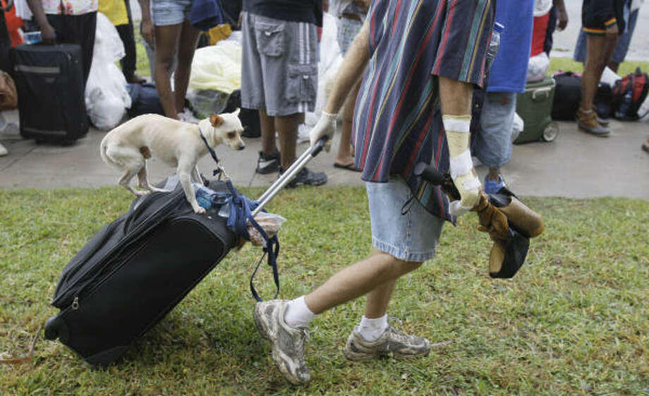 A dog named Kilo perches on luggage pulled by owner Barry Warnke to an evacuation bus taking Galveston residents to San Antonio on Sunday. Photo: Melissa Phillip, Chronicle
