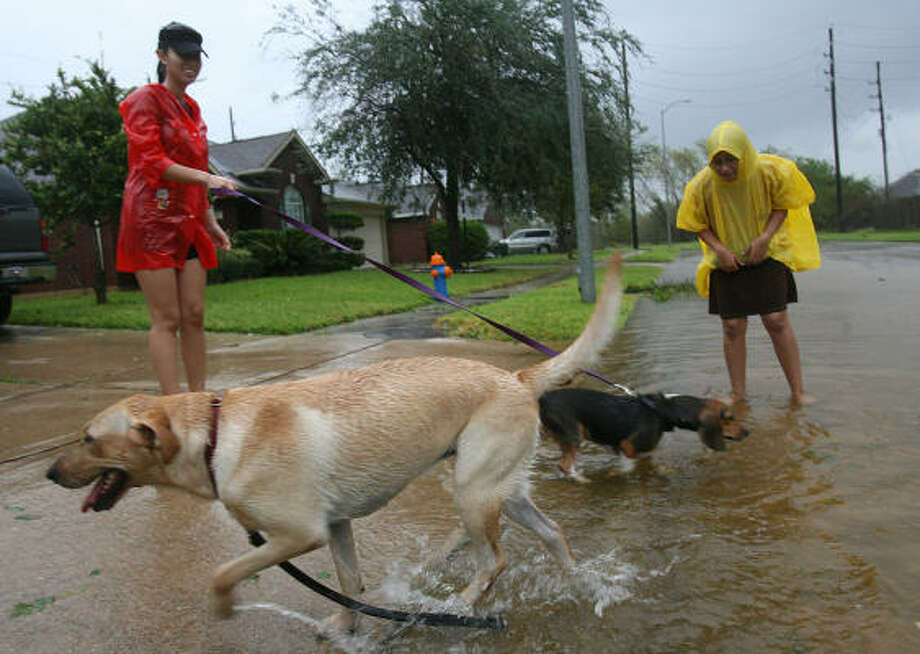 Sisters Ingrid Longoria and Lisa Longoria walk their dog in Pearland Saturday after hunkering down through the hurricane's overnight passage. Photo: Mayra Beltran, Chronicle