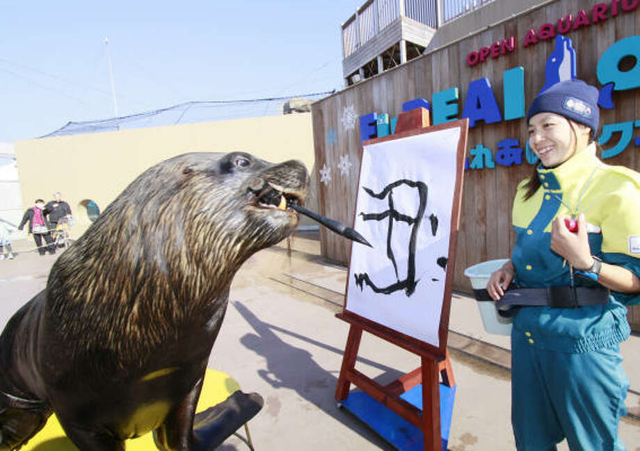 "Jackie, a 5-year-old sea lion, paints the word ""ox"" in Chinese as part of a preparation to welcome New Year of the Ox at the Hakkeijima Sea Paradise aquarium in Yokohama in Kanagawa prefecture, suburban Tokyo on Dec. 30 2008. Photo: YOSHIKAZU TSUNO, AFP/Getty Images"