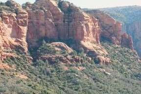Pink Jeep tours in Sedona, Ariz., may rattle your teeth, but they also provide riveting views of the area.