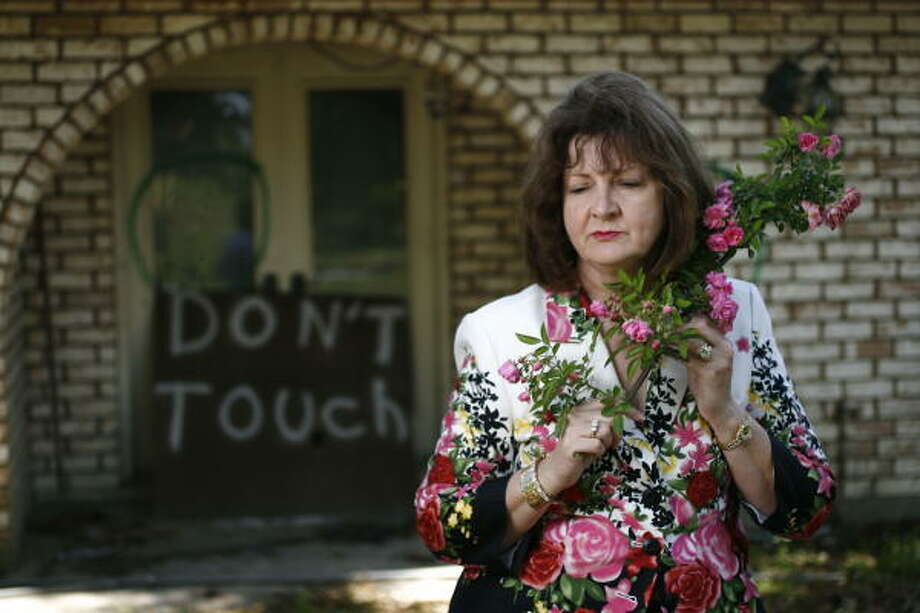 Before Hurricane Katrina, Peggy Martin's garden held 450 old roses and was one of the biggest collections in the South. One rose, a hardy variety whose origins are unknown, survived the storm. Photo: Nick De La Torre, Chronicle