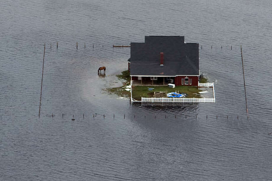 Cut off | A lone horse graces a flooded pasture surrounding a home as waters close in. | Sept. 14 | Winnie Photo: Smiley N. Pool, Houston Chronicle