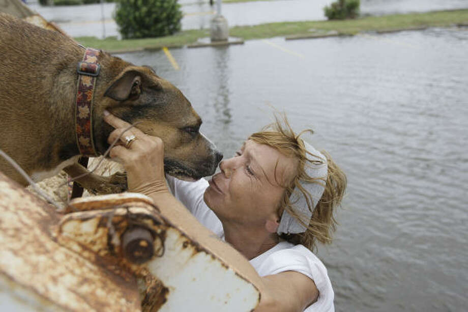 Nose to nose | Angie Fleener kisses her dog, Hally, after they were rescued from high water by a dump truck and taken to a shelter. Hally rode in the back of the truck to the shelter, while Fleener rode in the cab. | Sept. 12 | Galveston Photo: Melissa Phillip, Houston Chronicle