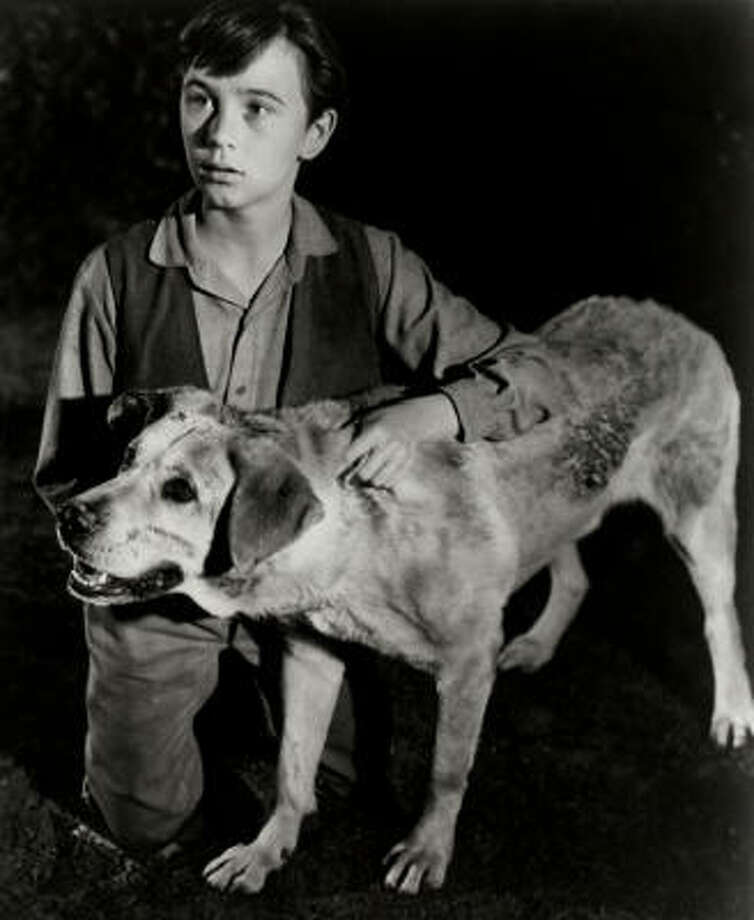 Keep tissues handy: ''Old Yeller''(1957), a boy (Tommy Kirk) and his dog. Photo: NBC