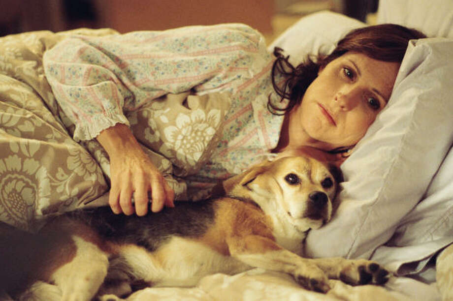 Molly Shannon stars in Year of the Dog. Photo: Paramount Vantage