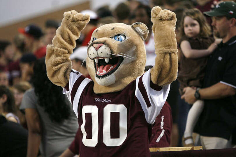Gt350r For Sale >> The Cinco Ranch Cougar mascot had much to cheer about. Photo-1408254.23458 - Houston Chronicle