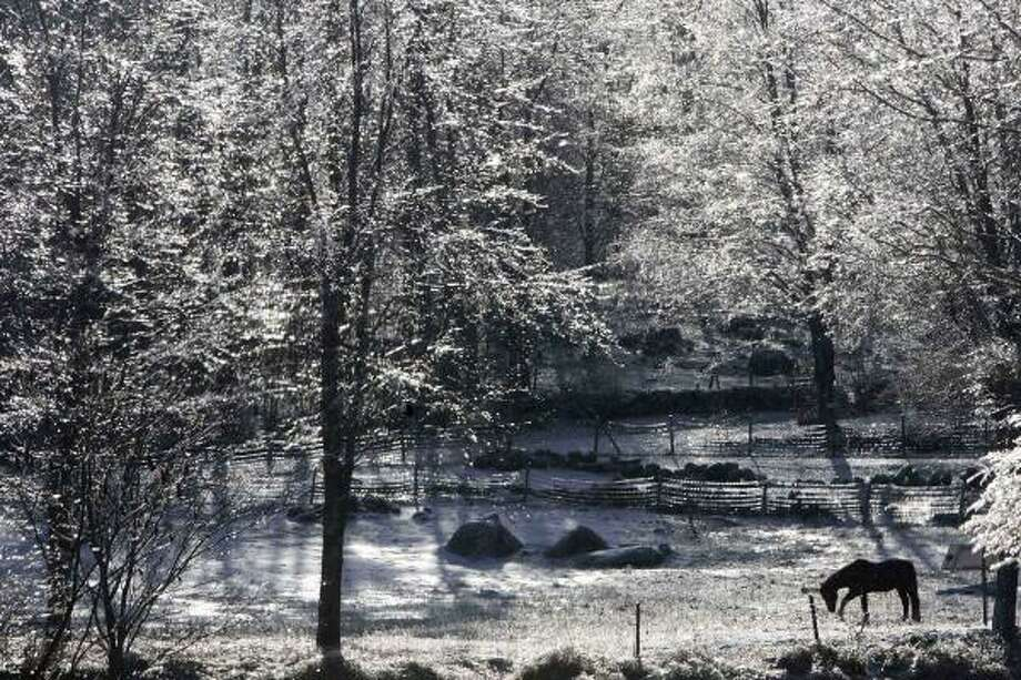 Saturday, Dec. 13:A horse breaks up the icy ground cover for food in Hillsborough, N.H. Photo: Jim Cole, AP