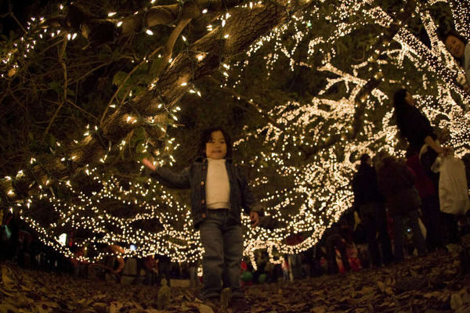 Kailee Cho, 3, walks under the grand Texas Live Oak on Sunday during the 10th-annual tree lighting and holiday festival at the Houstonian Hotel, Club & Spa, 111 N. Post Oak. Photo: James Nielsen, Chronicle