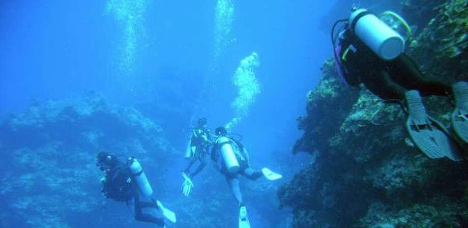 Passengers on Galveston-based ships can explore reefs off the coast of Cozumel. Photo: KEN GODDARD, U.S. FISH AND WILDLIFE SERVICE